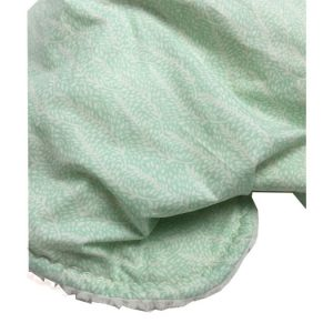 Mint Fern Baby Blanket