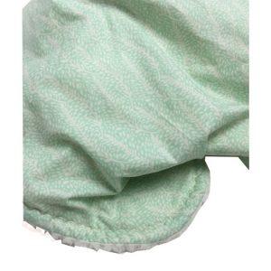 Mint Fern Baby Blanket